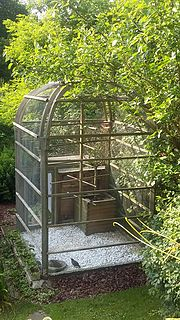 Aviary large enclosure for confining birds