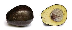 Avocado with cross section edit.jpg