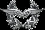 BW Schirmmütze Luftwaffe Silber.png