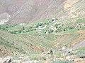 Bağin ( barena ) -yalnızdmlar mezrası - panoramio - zazamenaf.jpg