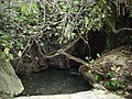 Bad der Aphrodite - panoramio.jpg