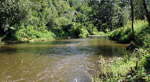Kamienna (river) - Kamienna river near Baltow