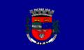 Bandeira-pirai.PNG