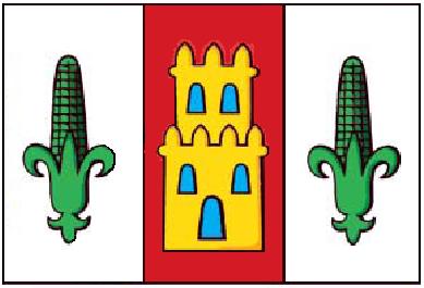 Bandeira de Zas