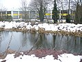 Basingstoke Canal - geograph.org.uk - 1155475.jpg