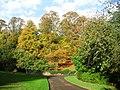 Beechwood Park in Autumn - geograph.org.uk - 1552930.jpg