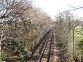 Bend in the disused railway - geograph.org.uk - 1660186.jpg