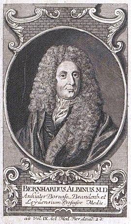 Bernhard Albinus
