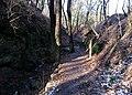 Bertino údolí (04), u 4. zastavení naučné stezky.jpg