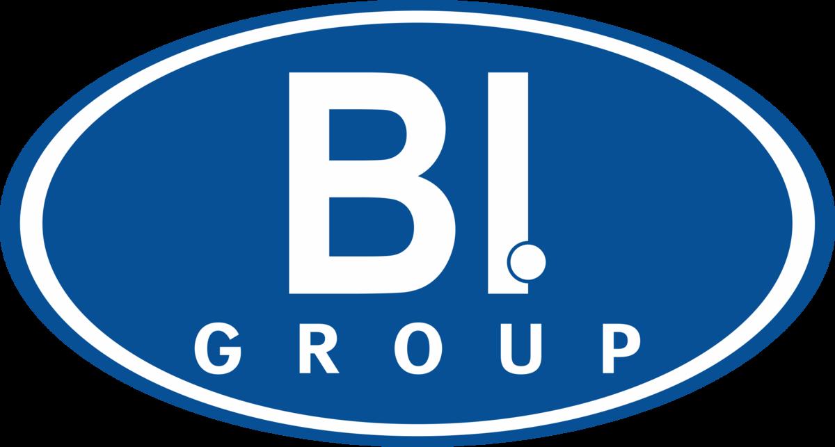 Картинки по запросу ай би групп лого