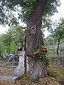 Biserica de lemn din Băiceni1.jpg