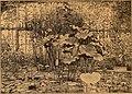 Blätter für Aquarien- und Terrarien-Kunde (1901) (19763954704).jpg