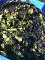 Black Dog Vineyards (21929293450).jpg