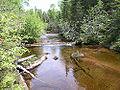 Black creek.jpg