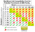 Blood Type Compatability.png