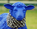 Blue Sheep 06.jpg