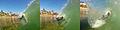 Bodyboarding Crescent Bay Laguna Beach (5138248180).jpg