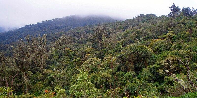 Parque Nacional Amboró em Santa Cruz de la Sierra