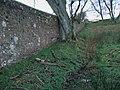 Boundary wall near Shipley - geograph.org.uk - 1092030.jpg