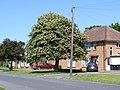 Bowhill, Bedford - 9053459355.jpg