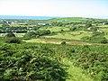 Bracken slope - geograph.org.uk - 564268.jpg