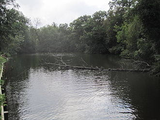Brent Park (Hendon) - The pond was part of a lake constructed as a duck decoy