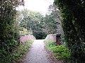 Bridge in the Woods - geograph.org.uk - 1013975.jpg