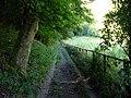 Bridleway to Ashford Hanger - geograph.org.uk - 955575.jpg