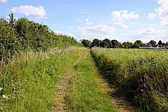 Bridleway to Sutton Wick - geograph.org.uk - 1355065.jpg