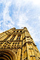 British Parliament Looking up.jpg