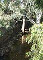 Brown Hill Creek 3.jpg