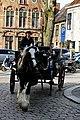 Bruges2014-138.jpg