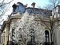 Bucuresti, Romania. Casa Oamenilor de Stiinta. (CASA ASSAN) Aprilie 2018 (detaliu) (B-II-m-B-19009).jpg