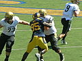 Buffaloes on offense at Colorado at Cal 2010-09-11 27.JPG