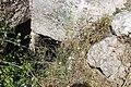 Burial niches.jpg