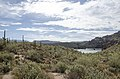 Butcher Jones Trail to Pinter's Point Loop, Tonto National Park, Saguaro Lake, Ft. McDowell, AZ - panoramio (71).jpg