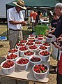 Buying Strawberries at a Farmers Market.jpg