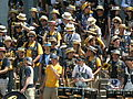 Cal Band at Cal Day 2010 spirit rally 6.JPG