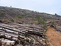 Camí de pujada a sa Torreta, Morna - panoramio (1).jpg