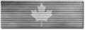 Canada Silver Ribbon Shadowed.png