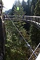 Capilano Suspension Bridge 2012 Winter (6992052615).jpg