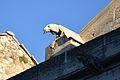 Carpentras - Cathédrale Saint-Siffrein 3.JPG