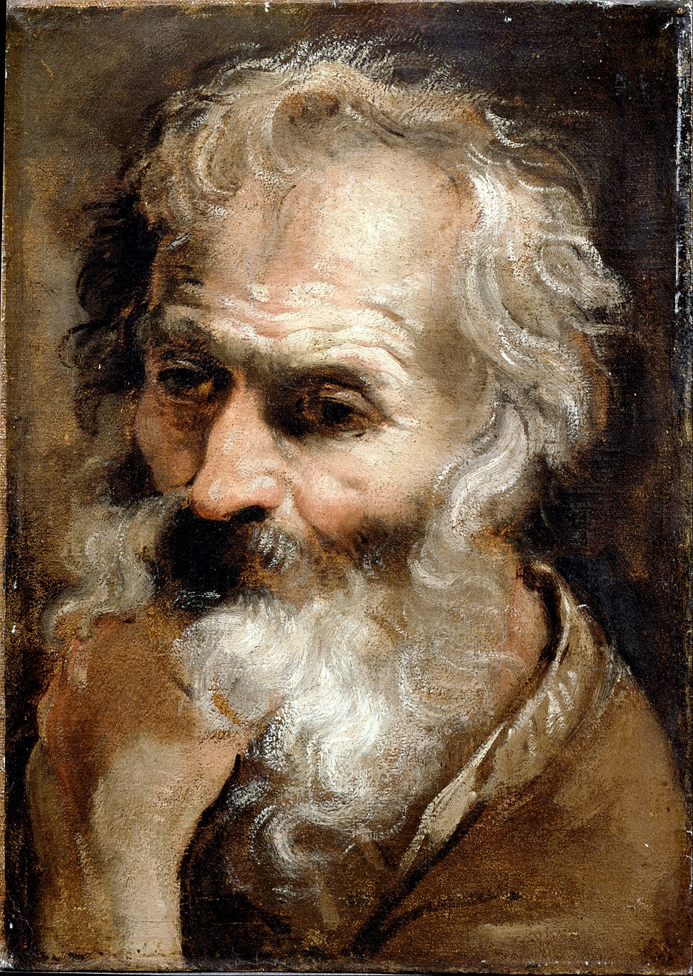 Carracci, Annibale - Head of an Old Man - Google Art Project
