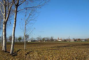 La zona di Castel Goffredo, possibile luogo di nascita di Virgilio.[1]