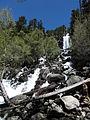 Cascada al Parc Nacional d'Aigüestortes i Estany de Sant Maurici.JPG