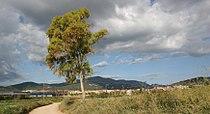 Castellar del Vallés con Sant Llorenç del Munt.jpg