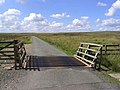 Cattle grid - geograph.org.uk - 522003.jpg