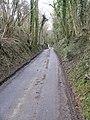 Cauldham lane leading to Hockley Sole - geograph.org.uk - 1164571.jpg
