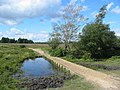 Causeway New Forest Hampshire - geograph.org.uk - 212818.jpg