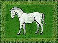 Cavallo bianco in campo verde.jpg